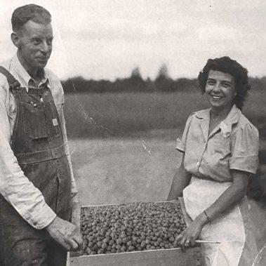 Premium Growers - Oregon Roasted Hazelnuts